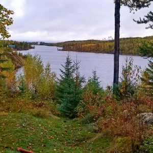 A Minnesota lake surrounded by fall leaves and pine trees.